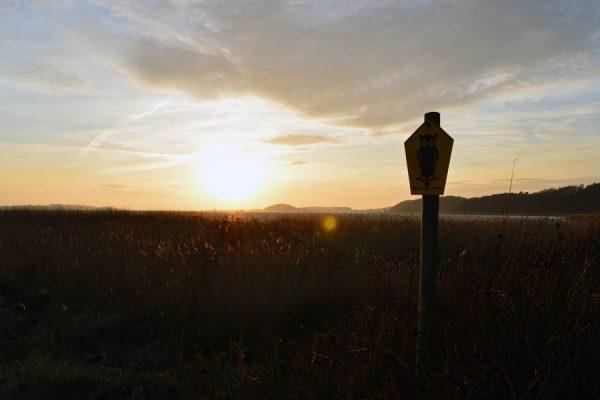 Sonnenuntergang bei Baabe