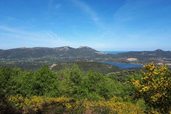 balagne-natur-insel-korsika-frankreich