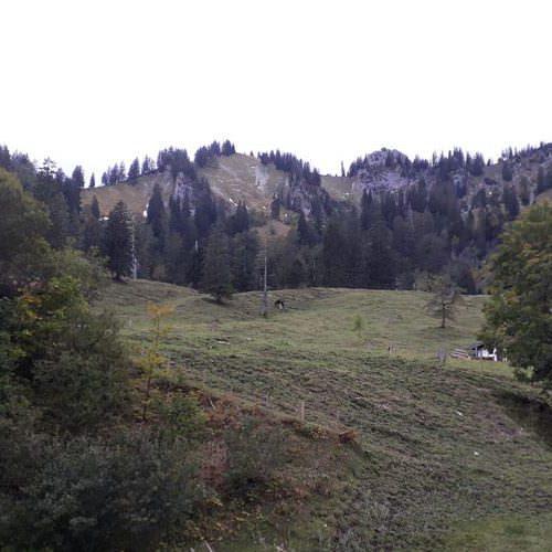 berge thorau alm in bayern wanderempfehlung | Reiseblog Rügen