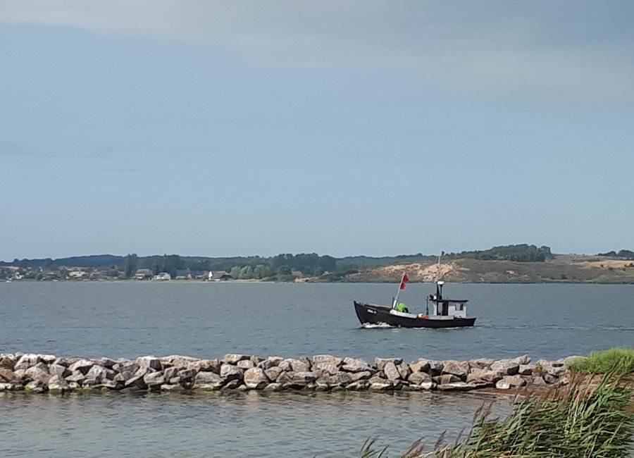 fischerboot auf ruegen faehrt raus zum fang | Reiseblog Rügen