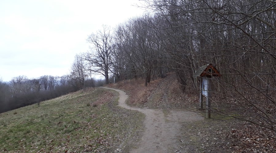 gruener wanderweg ostseebad goehren auf ruegen | Reiseblog Rügen