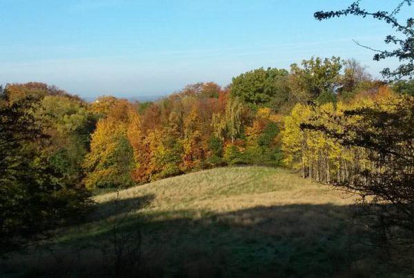 herbst im ostseebad goehren auf ruegen | Reiseblog Rügen