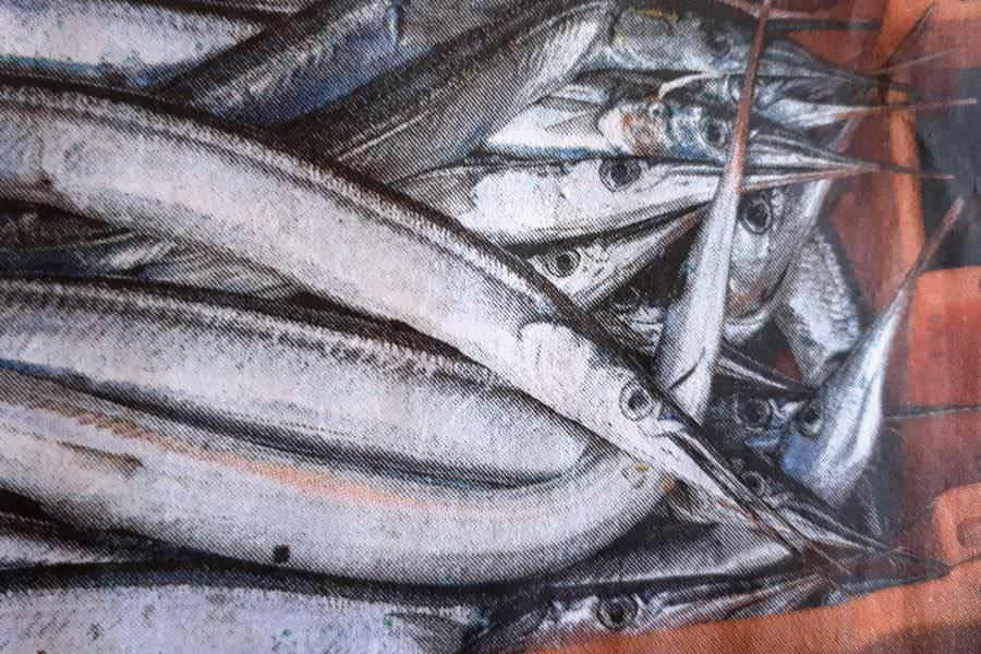 hornfisch ostsee insel ruegen fangen | Reiseblog Rügen