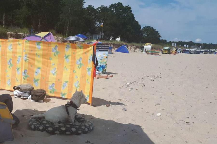 hundestrand auf ruegen ostseebad goehren | Reiseblog Rügen