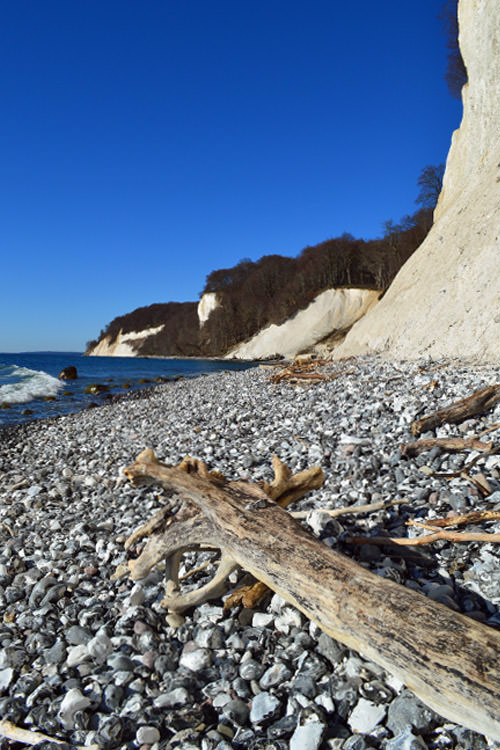 jasmunder nationalpark ruegen kreidefelsen | Reiseblog Rügen
