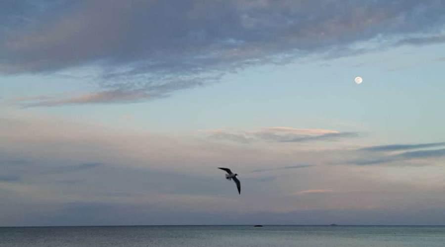moewe ostseebad goehren insel ruegen   Reiseblog Rügen