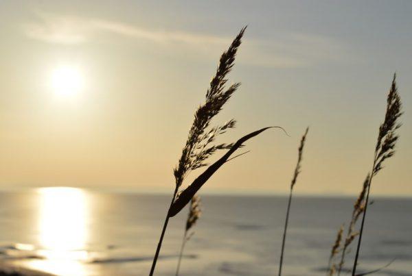 sonnenuntergang insel ummanz bei ruegen | Reiseblog Rügen