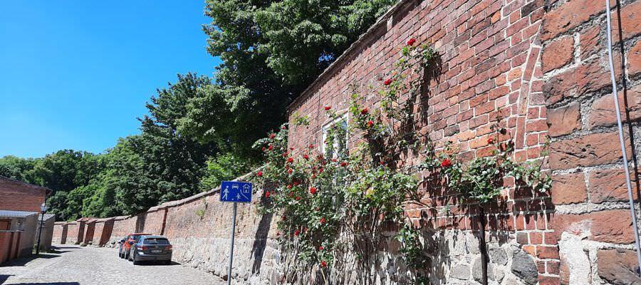 stadtmauer wittstock dosse brandenburg kleinstadt | Reiseblog Rügen