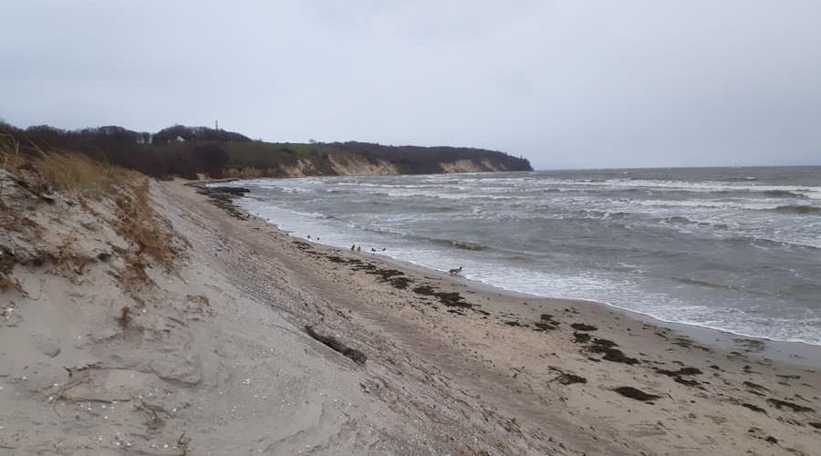 strandabspuelung ostseebad goehren insel ruegen | Reiseblog Rügen