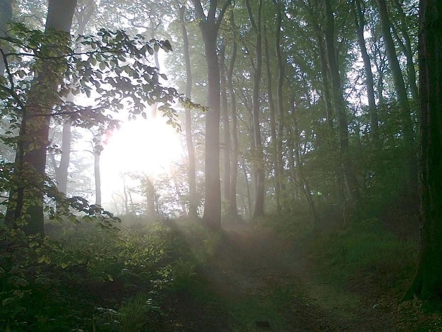 zauber zeit auf ruegen hoevt im ostseebad goehren | Reiseblog Rügen